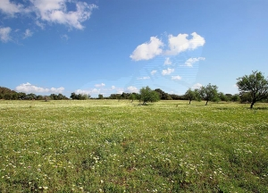 Development plot of 38,000m2 approx. 10 min from Ses Salines and Es Trenc,